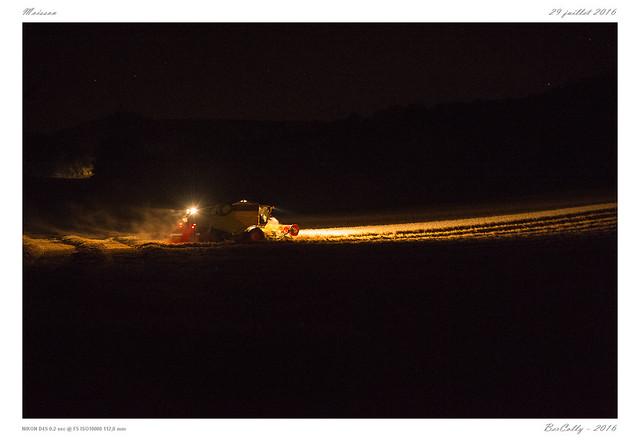 La Moisson | Harvest