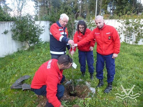 2017_03_21 - Plantação de Árvores nos BVART (14)