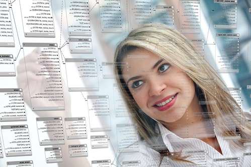 Woman working on database schema
