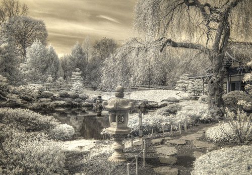 cocoabiscuit d300 ir infrared garden japanese