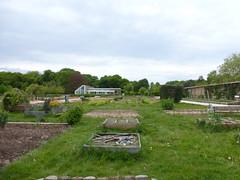 Domaine de la Grange-la-Prévôté,  Savigny-le-Temple
