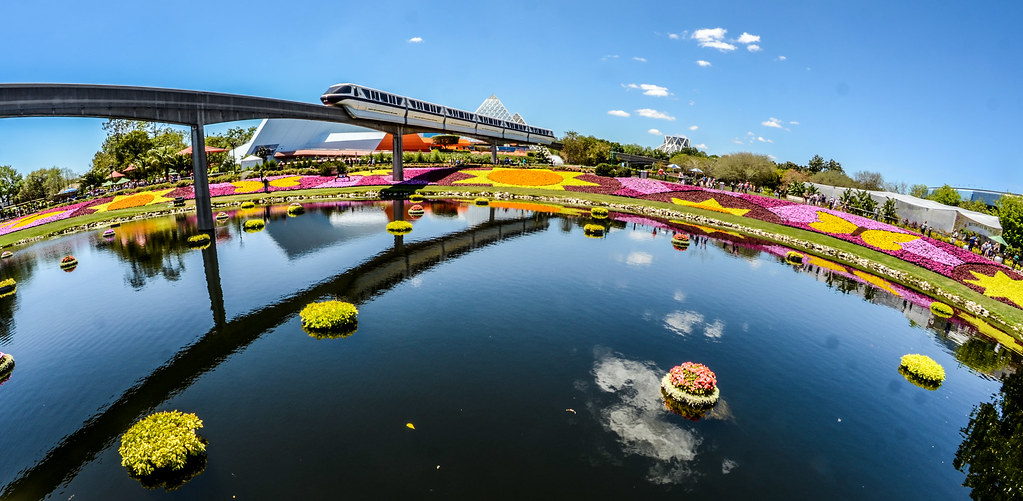 Monorail flowers