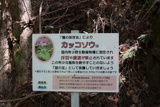 20160430-鳴神山-0057.jpg