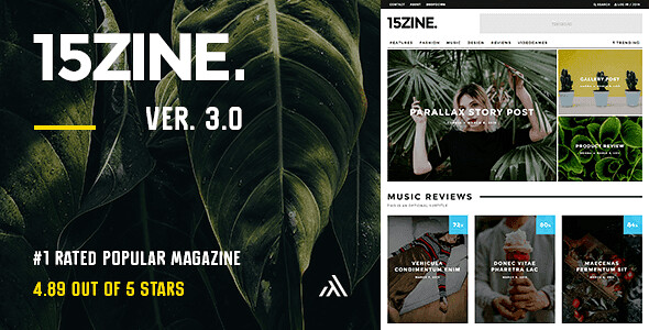 15Zine WordPress Theme free download
