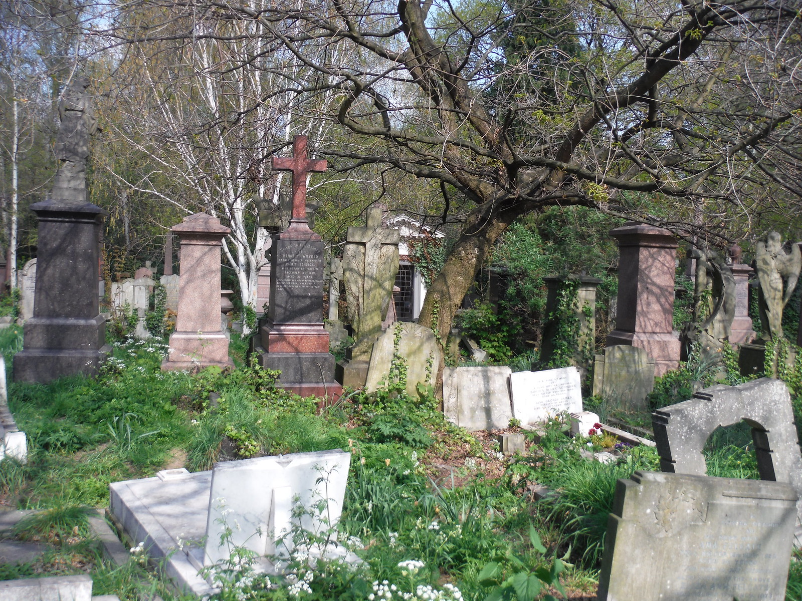 Abney Park Cemetery (I) SWC Short Walk 26 - Woodberry Wetlands (Stoke Newington Reservoirs)