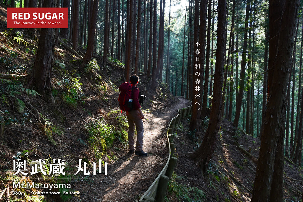 2017_03_19_丸山