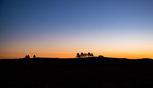 custerstatepark sunrise winter dawn blackhills southdakota orange trees backlit silhouette slope wildlifelooproad sky morning sun blue hills custer unitedstates us statepark