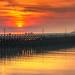 Golden sunset . by rudi.verschoren