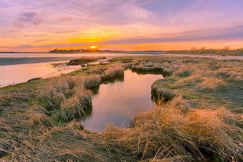 marsh pool grass evening clouds sky sunset