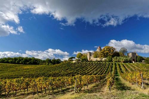 Gironde: premières côtes de Bordeaux - Arbis - Château de Benauge