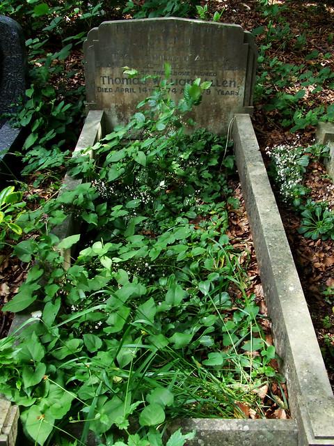 cemetery allotment