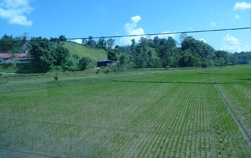 Makale-Makassar-Bus 3 (7)