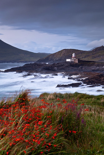 flowers lighthouse waves dusk stormy coastal countykerry valentiaisland explored ef24105mmf4lisusm commissionersofirishlights