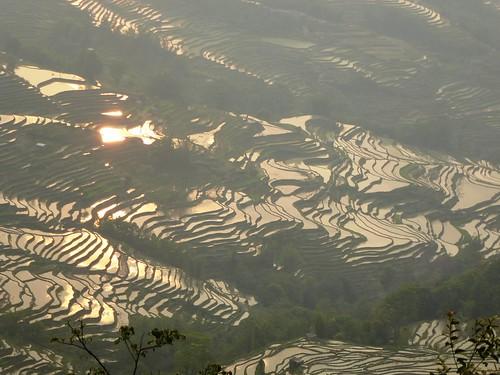 Yunnan13-Yuanyang 24-Bada (12)