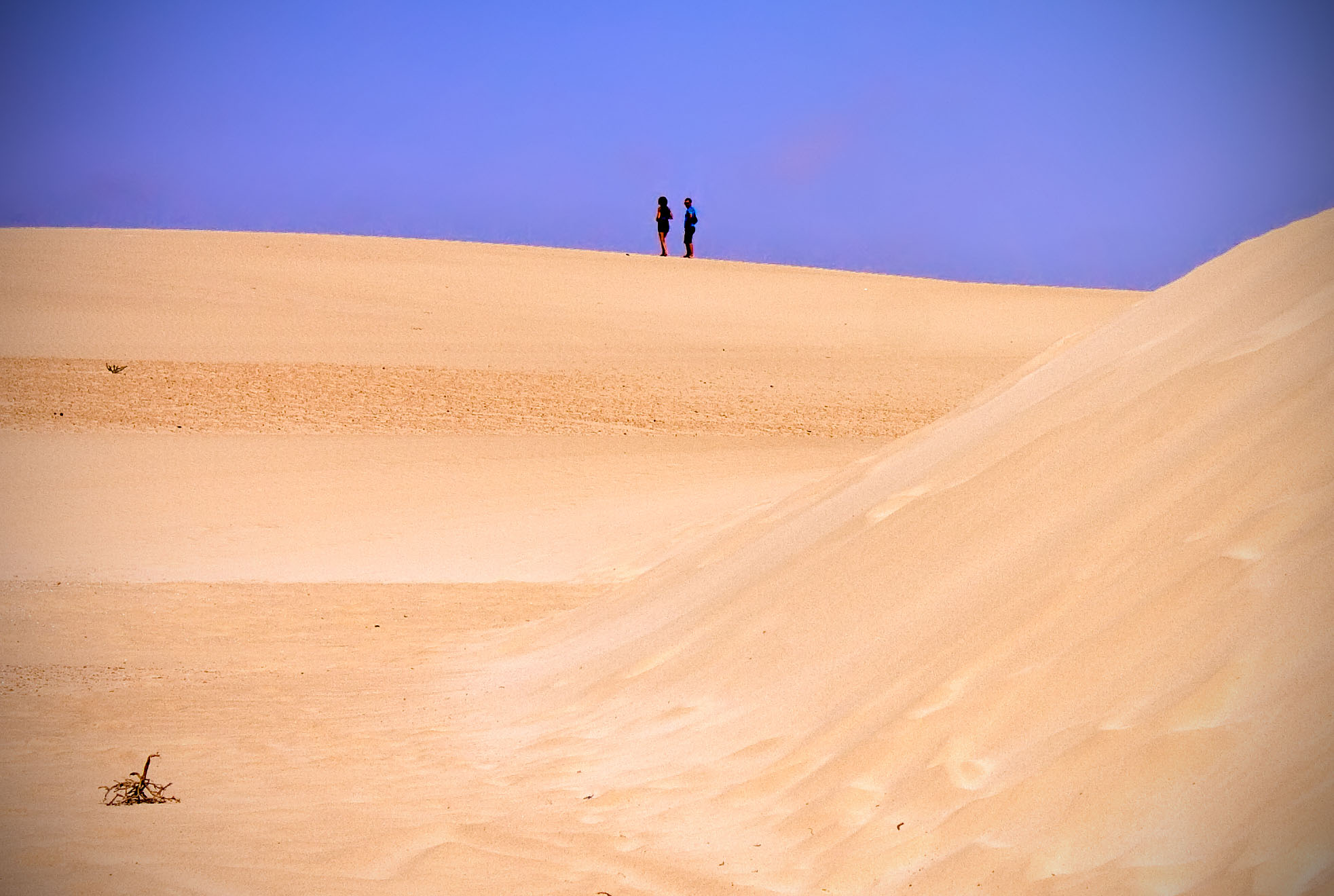 - Dunes -Fuerteventura