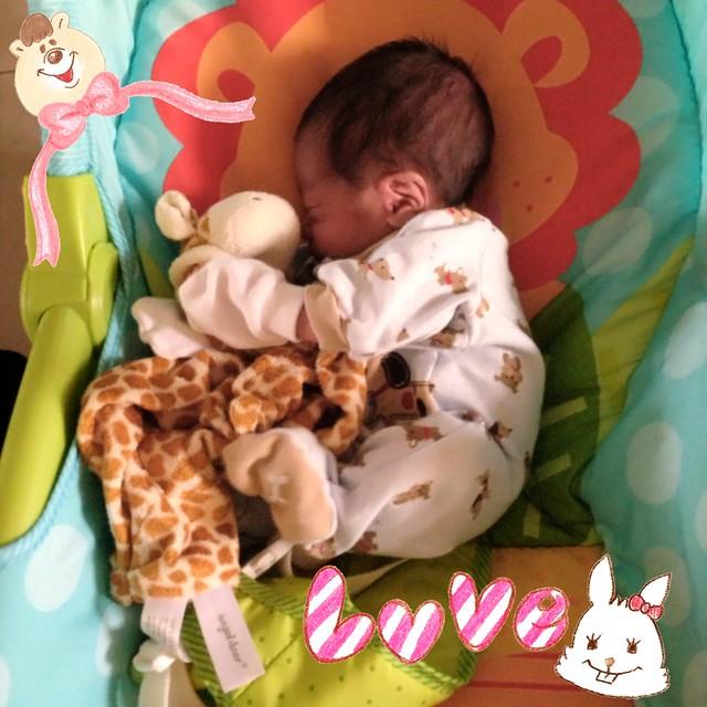 ((FULL)) Feeding Frenzy Newborn Baby 9800941626_b0bed69857_z