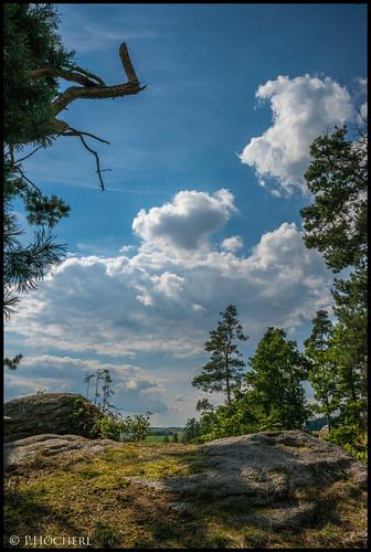 landscape RAW