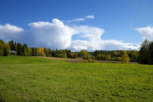 autumn sky color tree nature pine clouds forest suomi finland landscape leaf nikon europa europe day view cloudy sunny hämeenkyrö maisema syksy lehti d800 mänty 2013 väri kulttuurimaisema