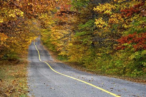 autumn ontario nature leaves rural forest landscape hill canopy northernontario fallcolours stjosephisland niksoftware tonalcontrast pline colourefex highway548 fujixe1 fall2013 jocelyntownship