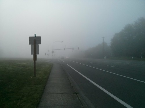 Foggier Walk