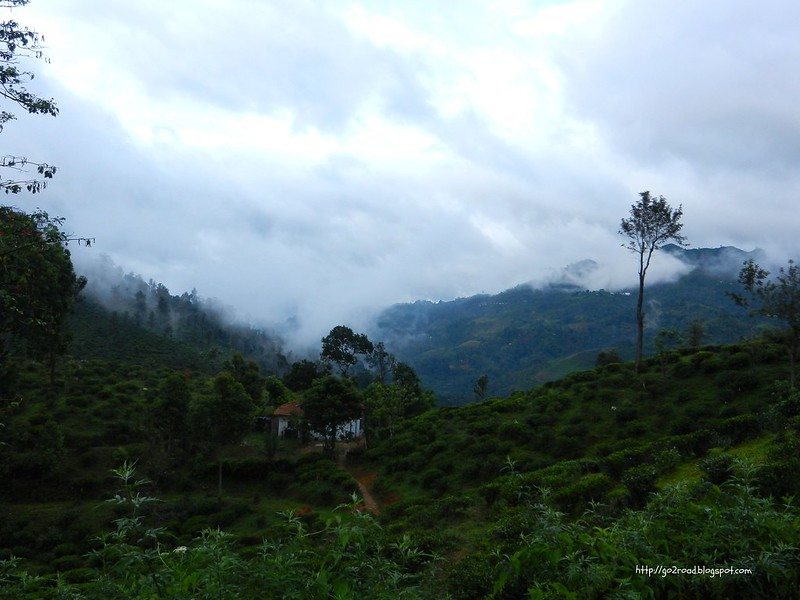 Элла, Шри Ланка (Цейлон)