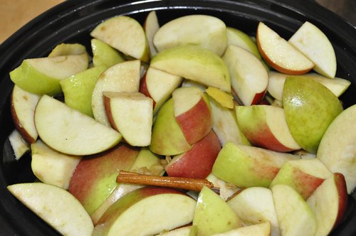 apple sauce in the slow cooker 9
