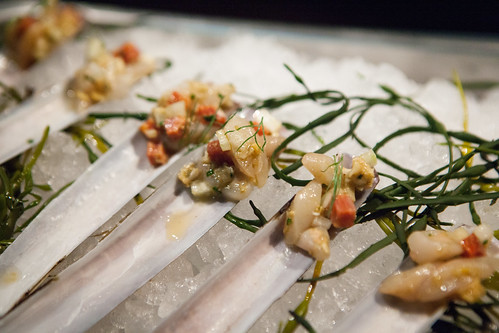 Costata - Razor clam crudo with fennel and soppressata