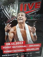 WWE Live 2013 - Forest National