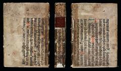 Manuscript bookbinding, 16th century?