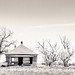 An abandoned farm house outside of Dalhart by • ian
