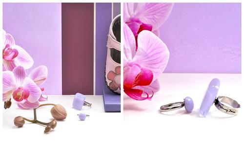 ragyogo_orchidea2