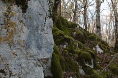 Mini-falaise - Photo of Léry