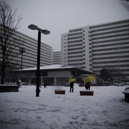 Nagisa New Town Canyons with Yellow Umbrellas