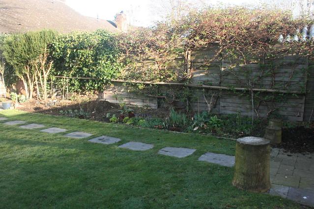 The garden: 20 March 2014