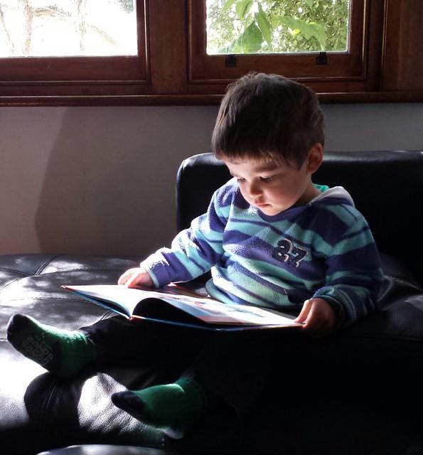 Reading a digger book