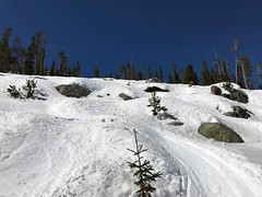 Prime spring conditions today on Coupler. Mind the rocks and trees.