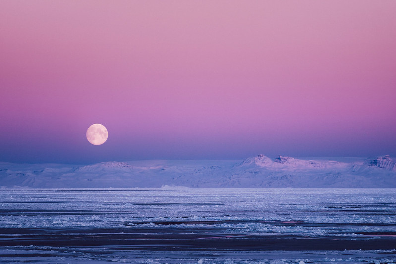 Arctic Predawn Colour