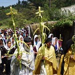CORRECTED: Palm Sunday in Guatemala!