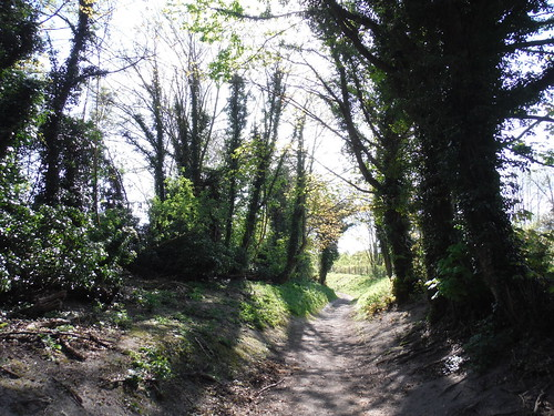 Lane up to Pulpit Hill