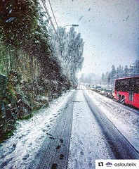 Primavera en Oslo.... #Repost @oslouteliv with @repostapp ・・・ Snart mai og kong vinter gjør et lite comeback :snowflake: Oslo:round_pushpin: - :camera:: @bhat10 - #vinter2017 #oslo #oslove #oslolove #oslocity #oslogram #oslolife #oslo #osloby #oslouteliv