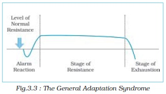 stages of adaptation syndrome