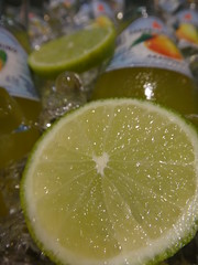 leaf(0.0), plant(0.0), produce(0.0), food(0.0), citrus(1.0), lemon-lime(1.0), lemon(1.0), key lime(1.0), macro photography(1.0), green(1.0), fruit(1.0), drink(1.0), sweet lemon(1.0), lime(1.0),