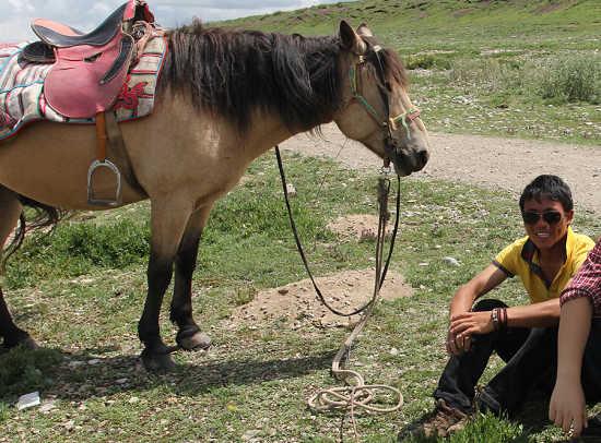 骑马小哥丙和他的马