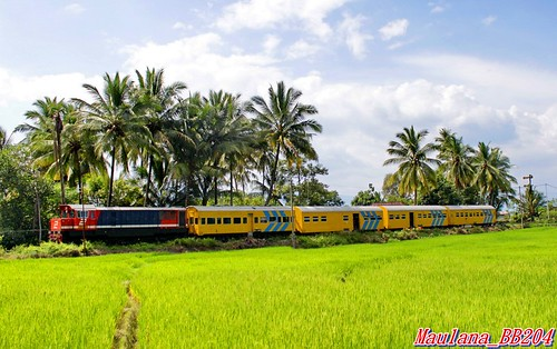 The beauty of Singkarak Tourism Railway