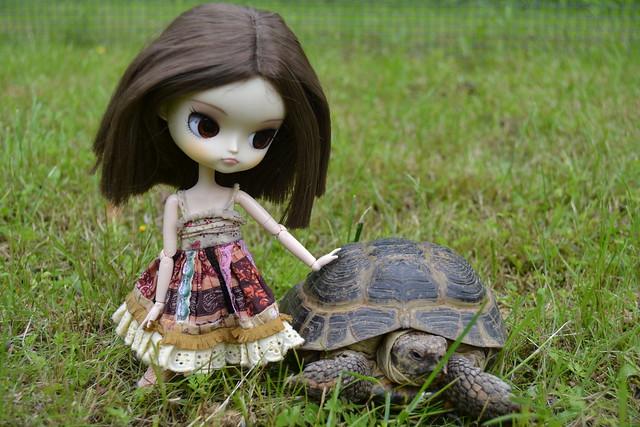 Leah ja kilpikonna