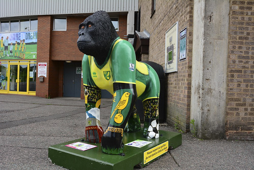 Mr Carrow the GoGoGorilla