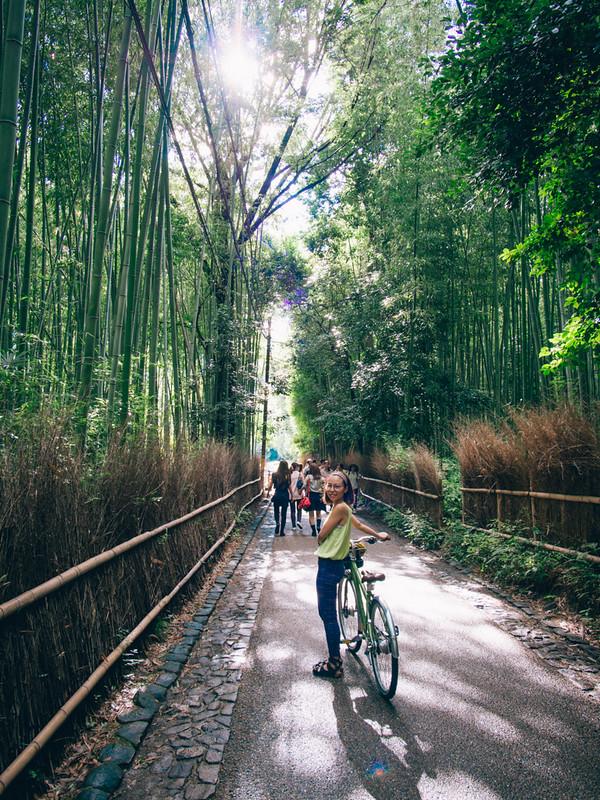京都單車旅遊攻略 - 日篇 京都單車旅遊攻略 – 日篇 10112517813 537b52ce85 c