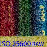 25600 raw