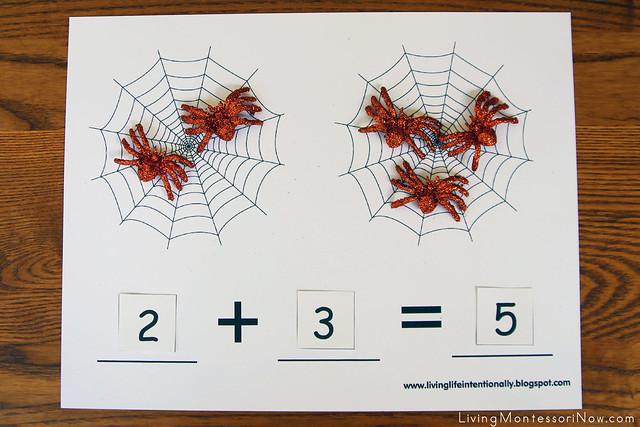 Spider Addition Layout