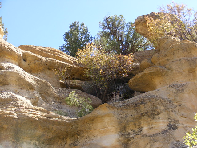 New Mexico Natural Arch NM-415